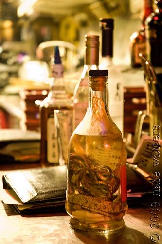 Snake/ginseng vodka @ Le Voyeur